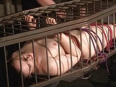 Slave Caroline Pierces cage bondage and lesbian bd