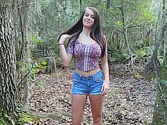 Forest anal